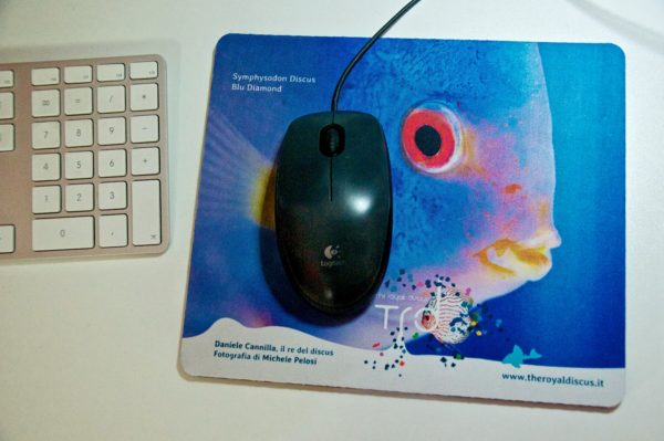 The Royal Discus Mouse Pad