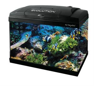 Aquario HAQUOSS Evolution 40