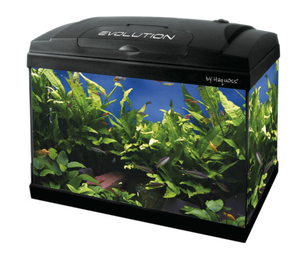 Acquario Haquoss Evolution 50