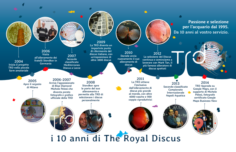 Storia del discus alla The Royal Discus